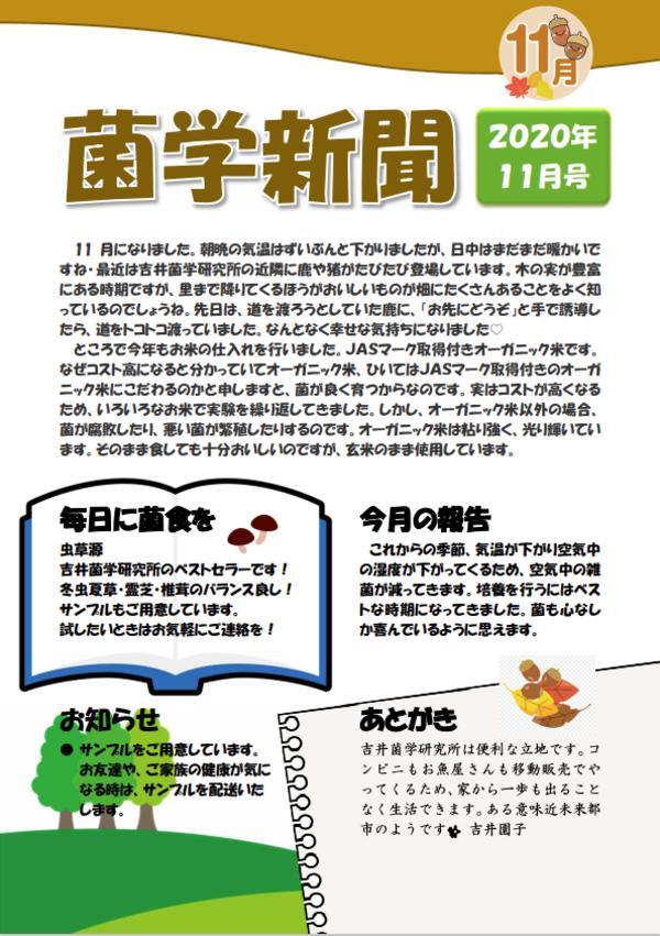 菌学新聞11月号公開しました!